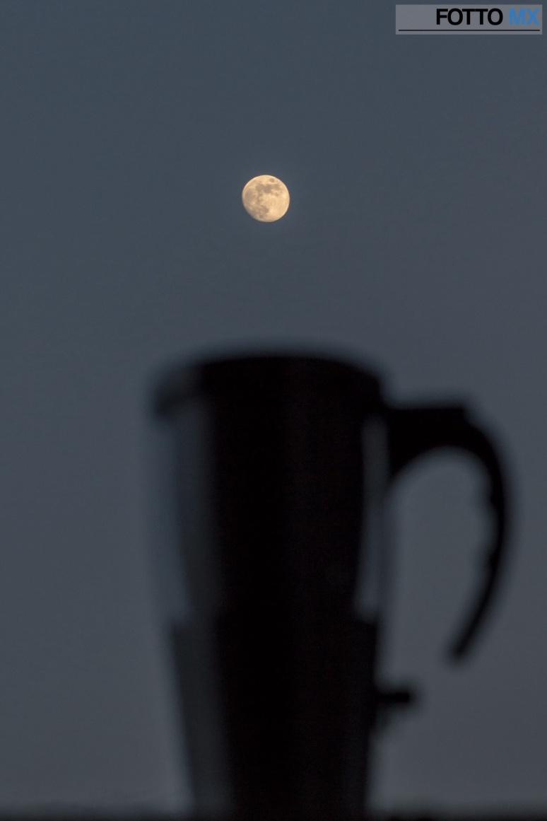 Coffee Moon